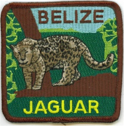 Belize Jaguar Patch