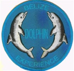 Belize - Dolphin Experience