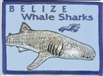 Belize Whale Shark