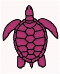 PINK TURTLE PATCH
